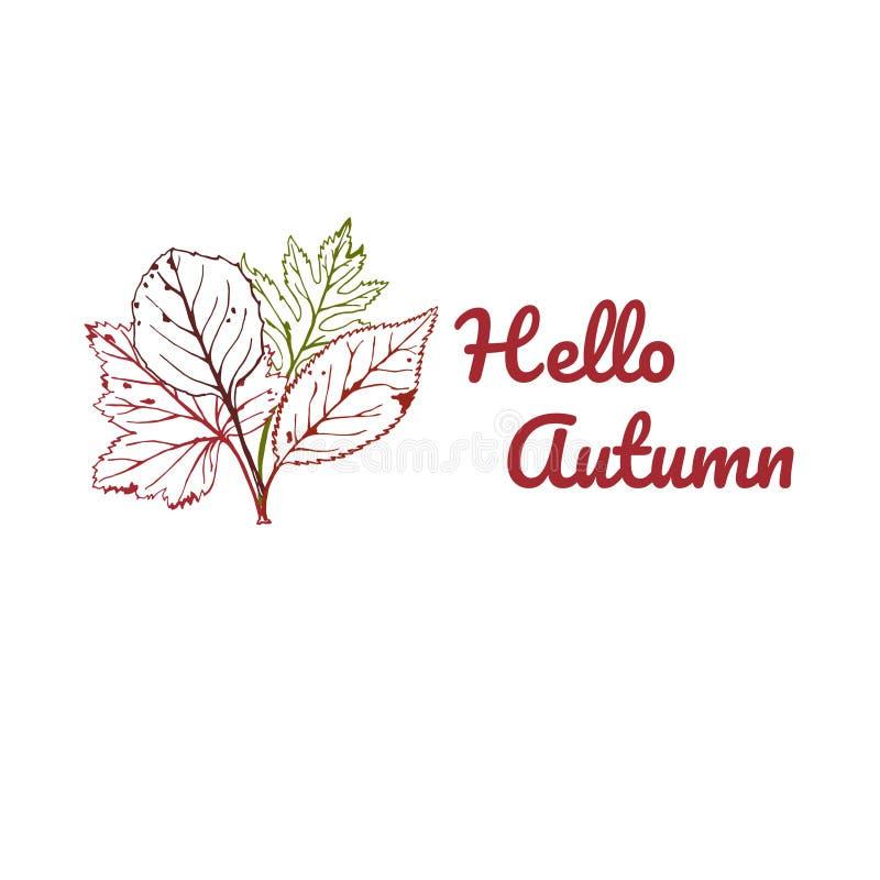 Wektorowa ilustracja jesień z tekst jesienią Cześć, ręka rysująca Sezonowa ilustracja z liśćmi ilustracja wektor