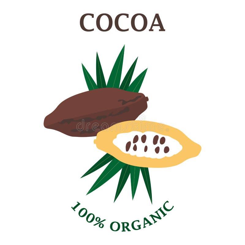Wektorowa ilustracja kakaowy lub czekoladowy drzewo Opierający się od subequatorial regionów Ameryka Południowa ilustracji