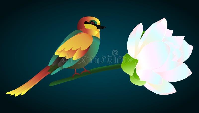 Wektorowa ilustracja kolorowy ptak ilustracji
