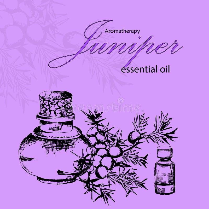 Wektorowa ilustracja kosmetyka olej jałowiec ilustracji