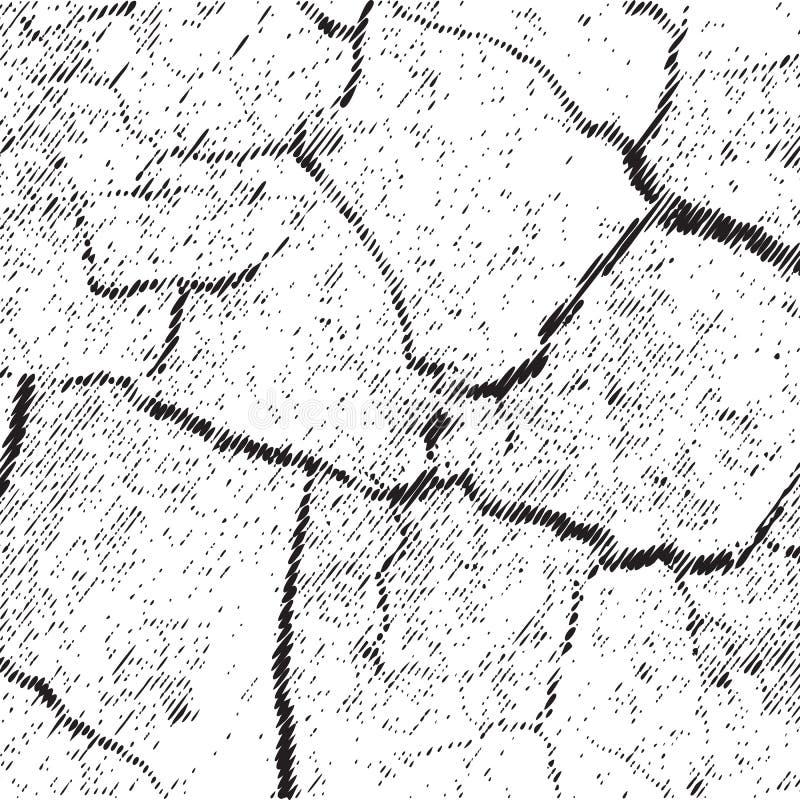 Wektorowa ilustracja Krakingowy Suszy Ziemskiego Odgórnego widok ilustracja wektor