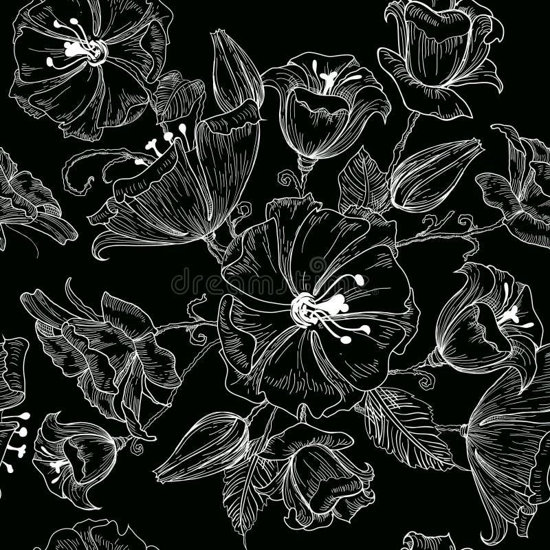 Wektorowa ilustracja pięknych kwiatów bezszwowy wzór na czarnym tle nakreślenie ilustracja wektor