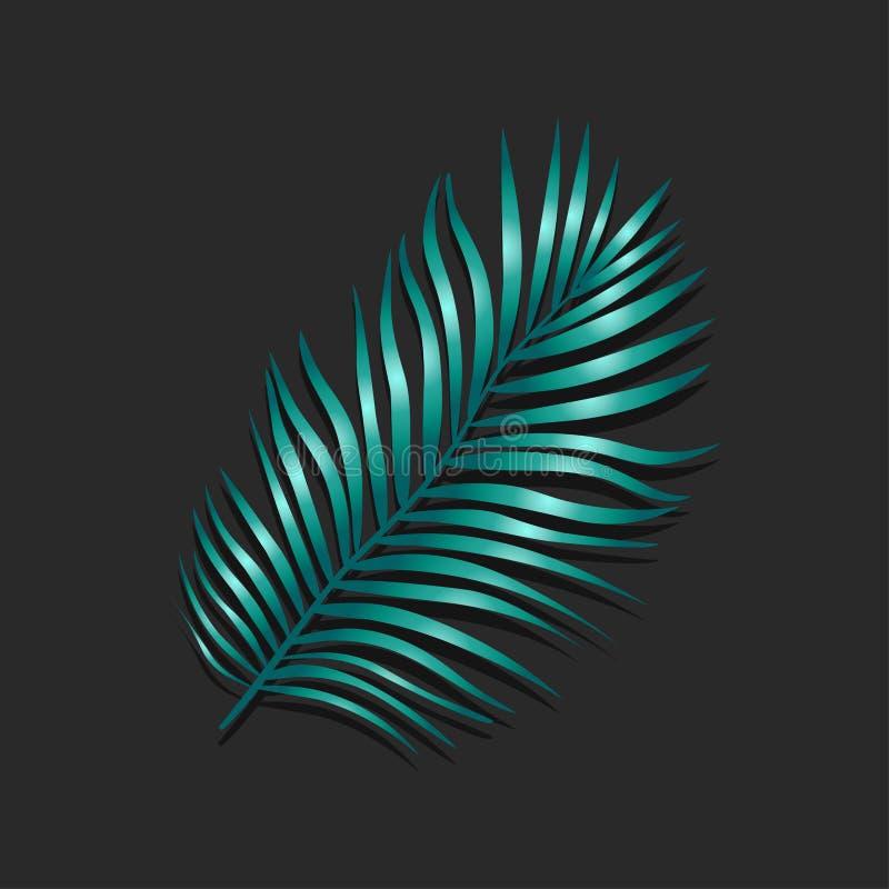 Wektorowa ilustracja realistyczny zielony tropikalny egzotyczny drzewko palmowe opuszcza ilustracji