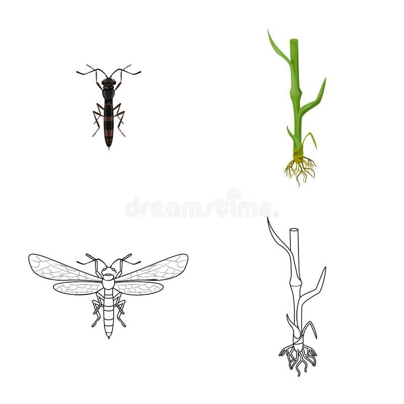 Wektorowa ilustracja rolnictwo i uprawia? ziemi? symbol Set rolnictwo i ro?liny wektorowa ikona dla zapasu royalty ilustracja