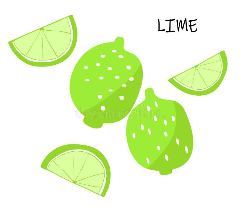 Wektorowa ilustracja wapno - cytrus owoc ilustracja wektor