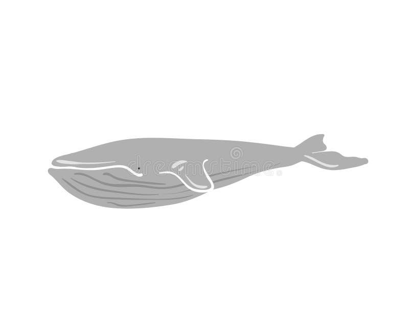 Wektorowa ilustracja wieloryb ilustracji