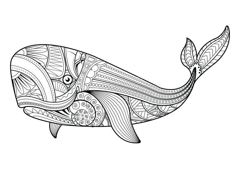 Wektorowa ilustracja wielorybie kolorystyk strony ilustracji