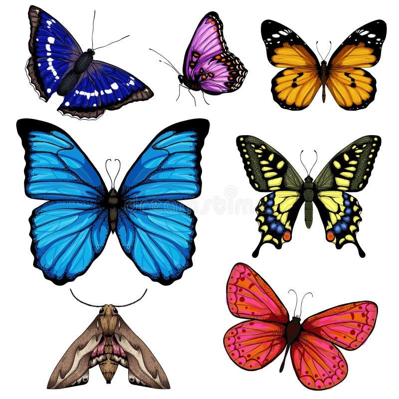 Wektorowa ilustracja z dużą kolekcją motyle royalty ilustracja