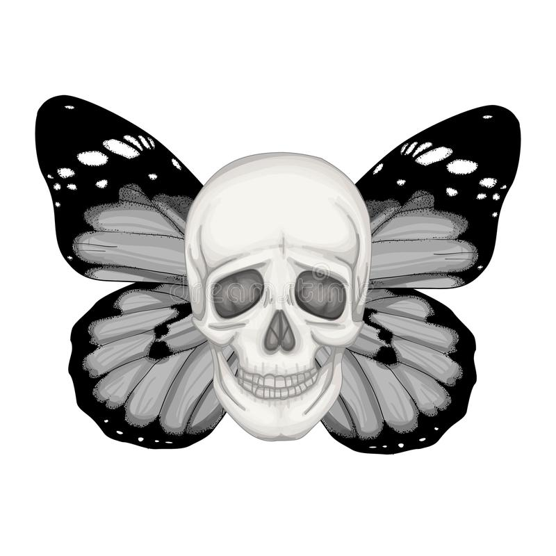 Wektorowa ilustracja z ludzką czaszką i skrzydłami motyl royalty ilustracja