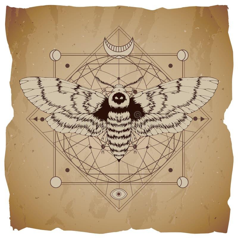 Wektorowa ilustracja z ręka rysującym nieżywej głowy ćma i Święty geometryczny symbol na rocznika papieru tle z poszarpanymi kraw ilustracja wektor