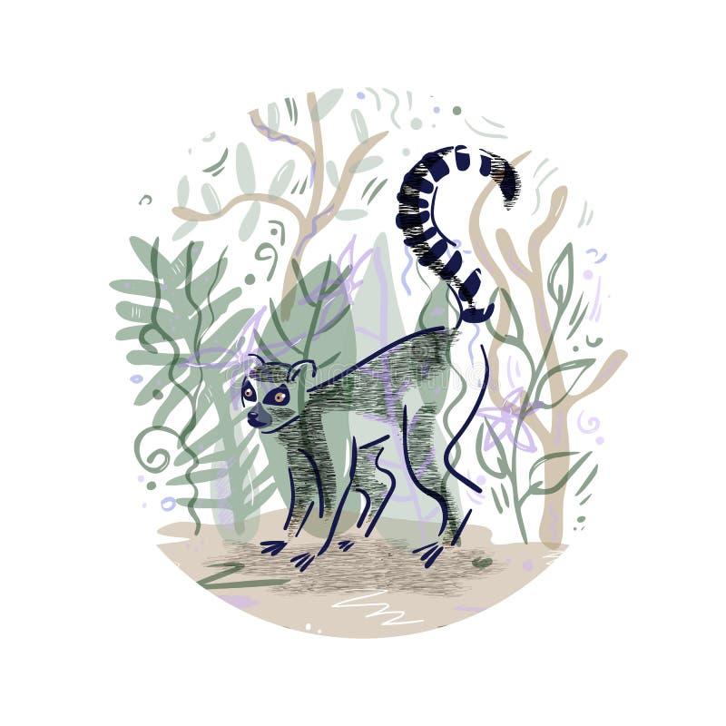 Wektorowa ilustracja z sylwetka lemura catta ilustracji