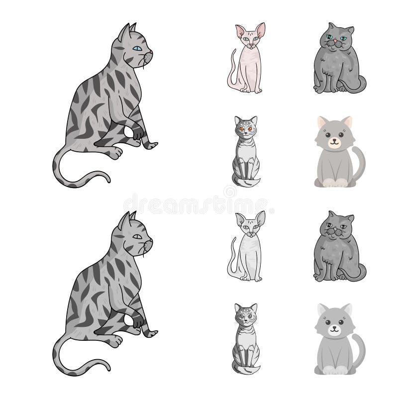 Wektorowa ilustracja zwierz?cia domowego i sphynx logo Kolekcja zwierz? domowe i zabawy wektorowa ikona dla zapasu royalty ilustracja
