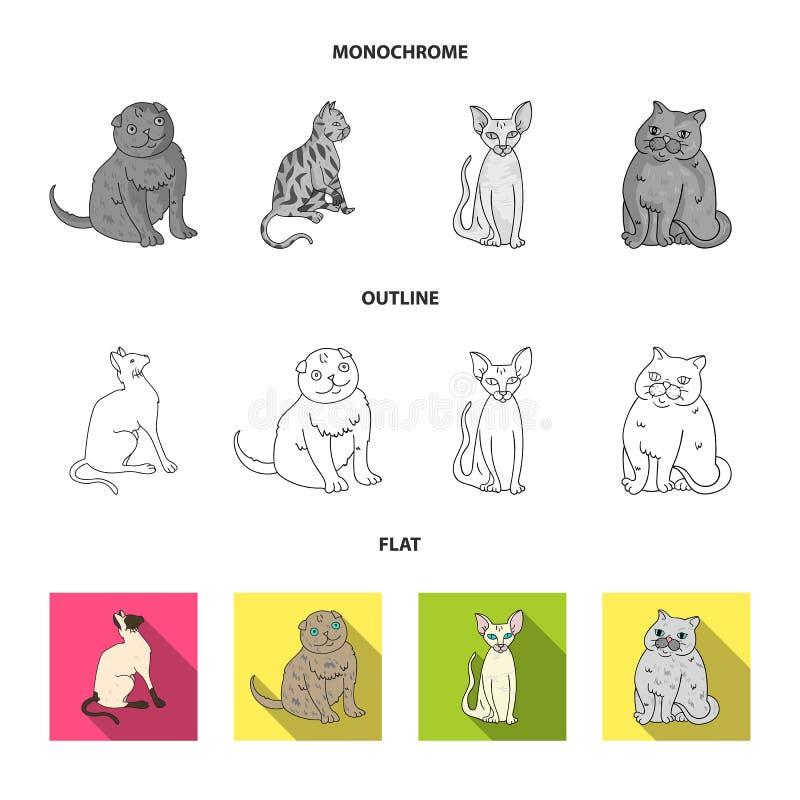 Wektorowa ilustracja zwierz?cia domowego i sphynx logo Kolekcja zwierz? domowe i zabawy wektorowa ikona dla zapasu ilustracja wektor