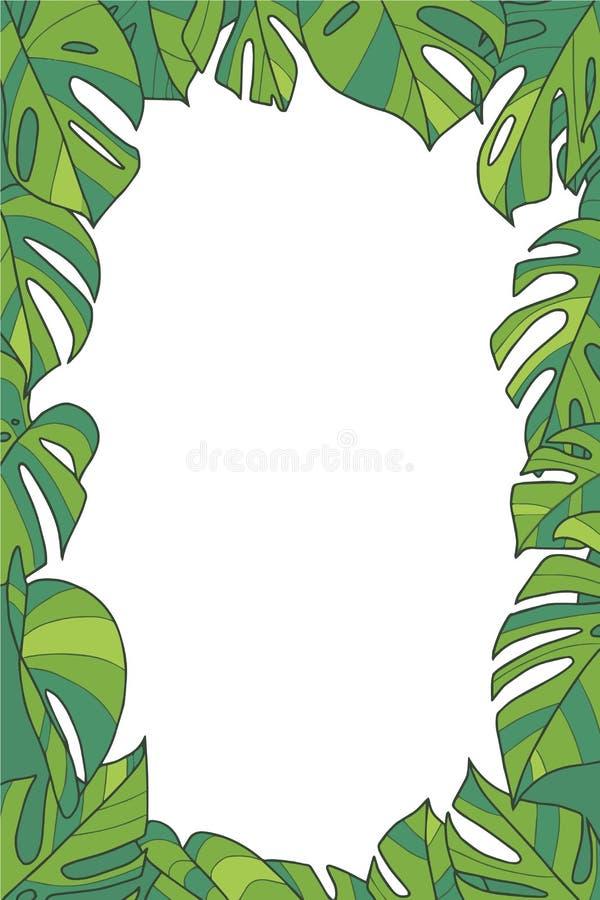 Wektorowa ilustracji rama z egzotyczną «Monstera Deliciosa «Szwajcarskiego sera rośliną opuszcza royalty ilustracja