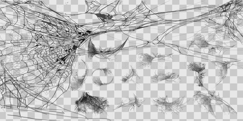 Wektorowa ilustracyjna Halloweenowa pająk sieć odizolowywająca na przejrzystym tle Hector jadu pajęczyny set Halloweenowy monochr ilustracja wektor