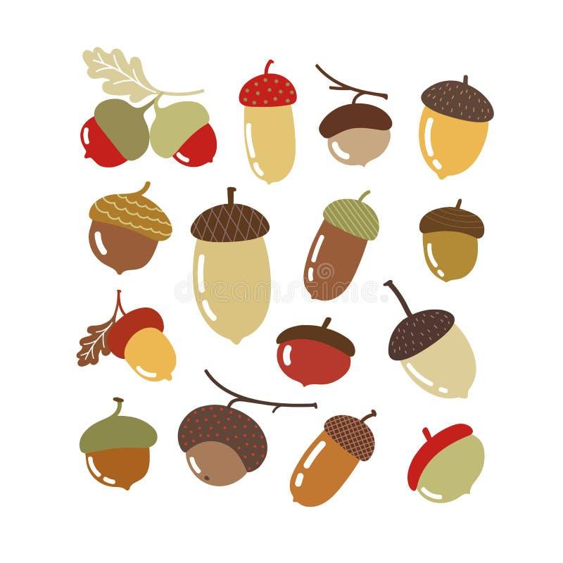 Wektorowa jesień ustawiająca z acorn zdjęcia stock