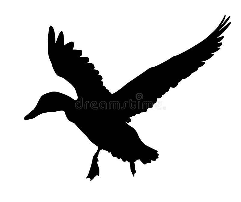 Wektorowa kaczka ilustracja wektor