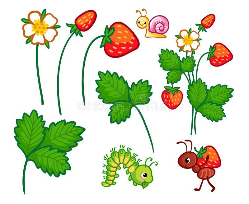 Wektorowa kolekcja z dzikimi roślinami ilustracja wektor
