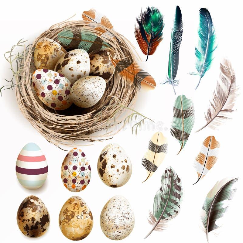 Wektorowa kolekcja z Wielkanocnych jajek ptaka gniazdeczkiem upierza w roczniku ilustracja wektor