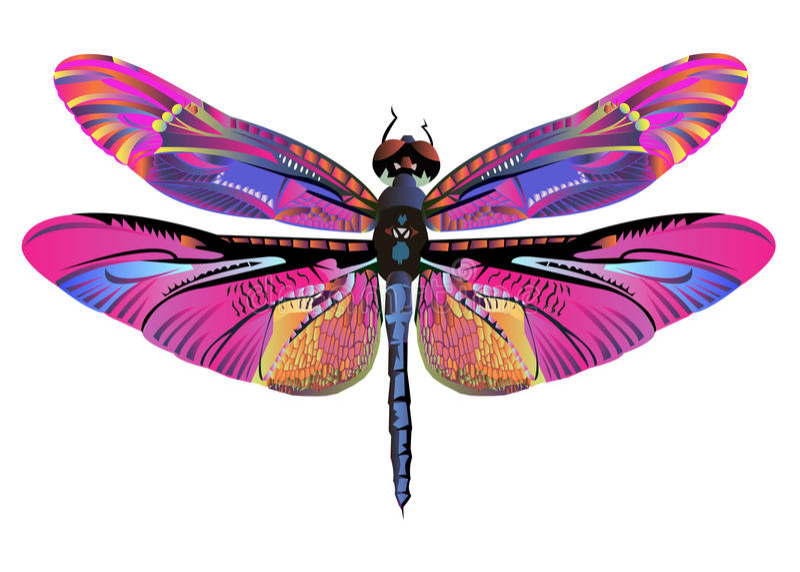 Wektorowa kolor sztuki dragonfly natury przyroda royalty ilustracja