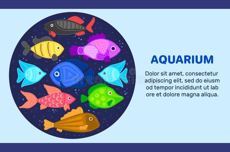 Wektorowa kolorowa kreskówki ryba w kółkowym kształcie Podmorski ?wiat Akwarium Śliczny morski życie pisces ilustracja wektor