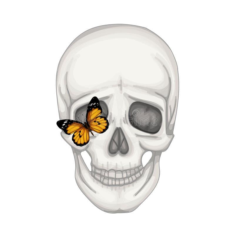 Wektorowa ludzka czaszka i motyl ilustracja wektor