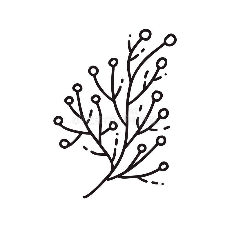 Wektorowa monoline ilustracji gałąź z ziarno naturalną ikoną Czarny logo dla eco projekta ilustracji