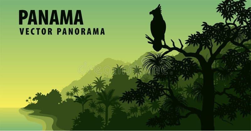 Wektorowa panorama Panama z dżunglą raimforest z harpy orłem ilustracji