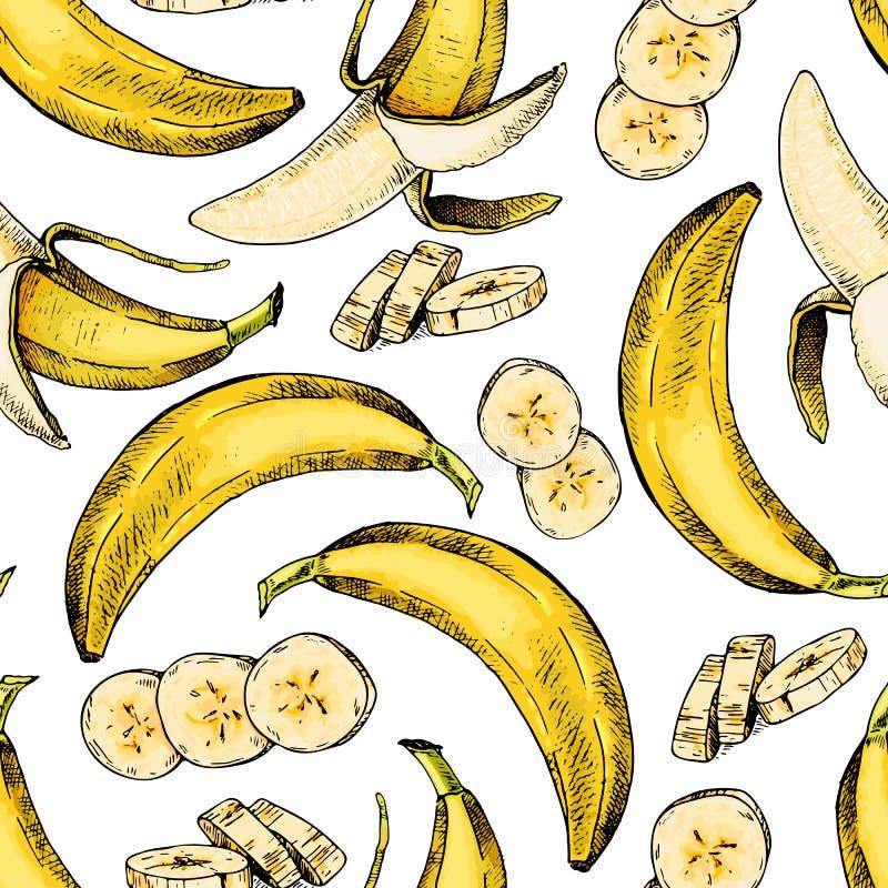 Wektorowa ręka rysujący bezszwowy wzór odosobniony banan Graweruję barwił sztukę Delicicous jarosza tropikalni przedmioty ilustracja wektor