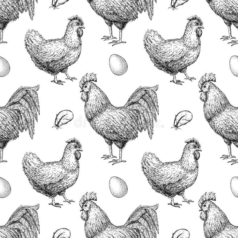 Wektorowa ręka rysujący kurczak hodowli bezszwowy wzór ilustracja wektor