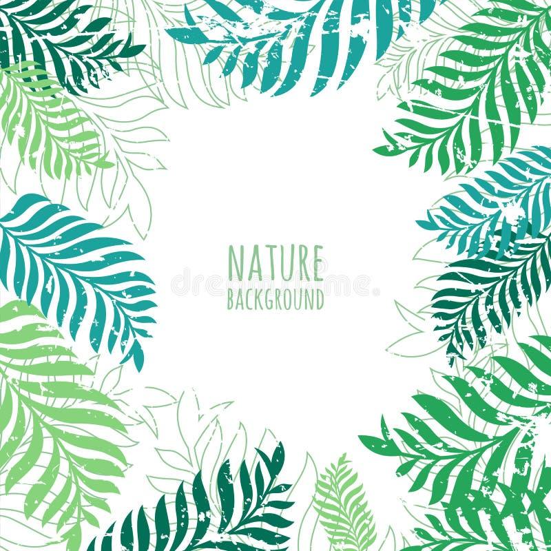 Wektorowa ręka rysujący zielony drzewko palmowe opuszcza, grunge tło ilustracji