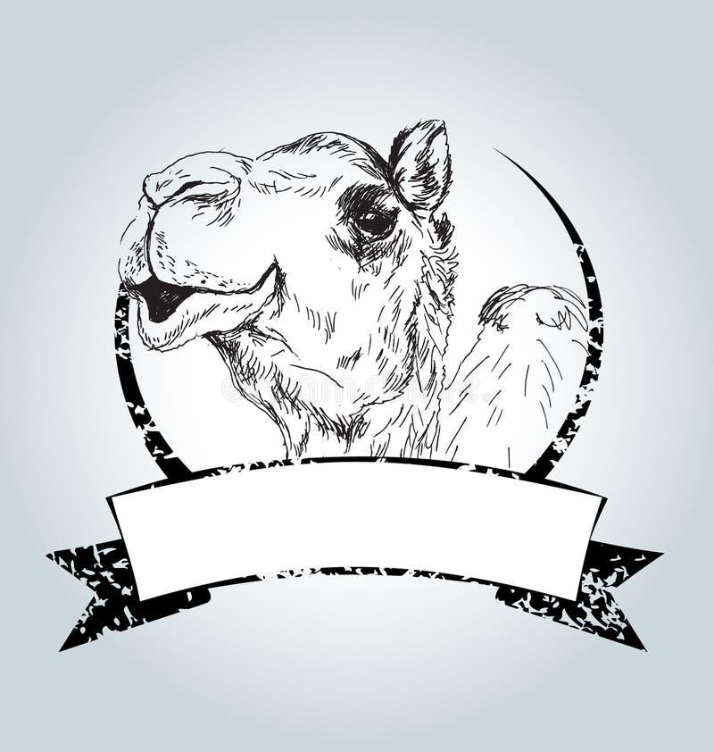 Wektorowa rocznik etykietka z wielbłądem royalty ilustracja
