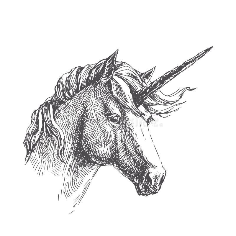 Wektorowa rocznik ilustracja jednorożec w rytownictwo stylu Ręka royalty ilustracja
