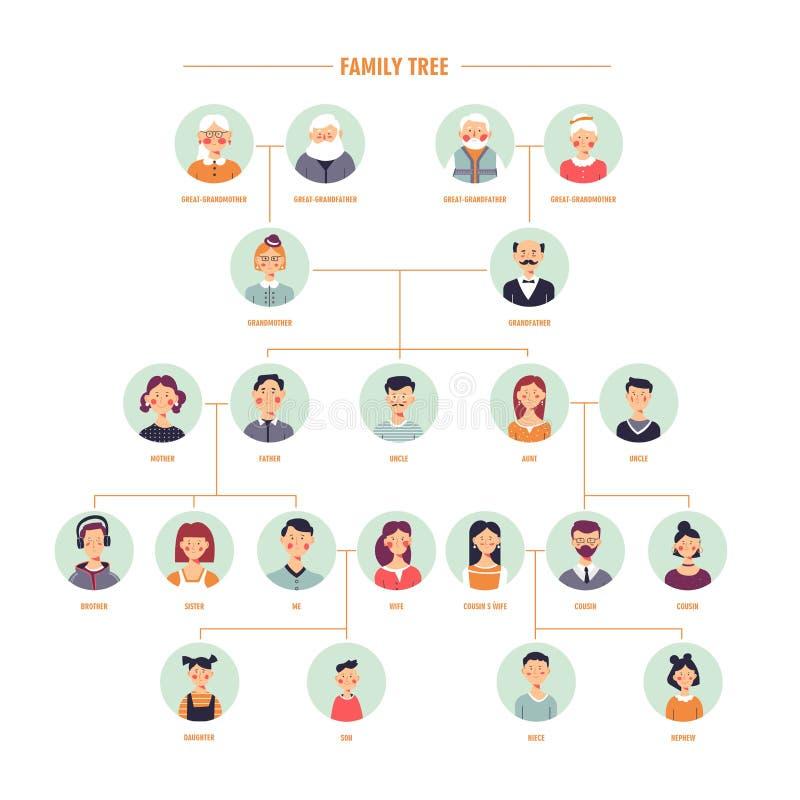 Wektorowa rodzinnego drzewa genealogia rozgałęzia się szablon royalty ilustracja