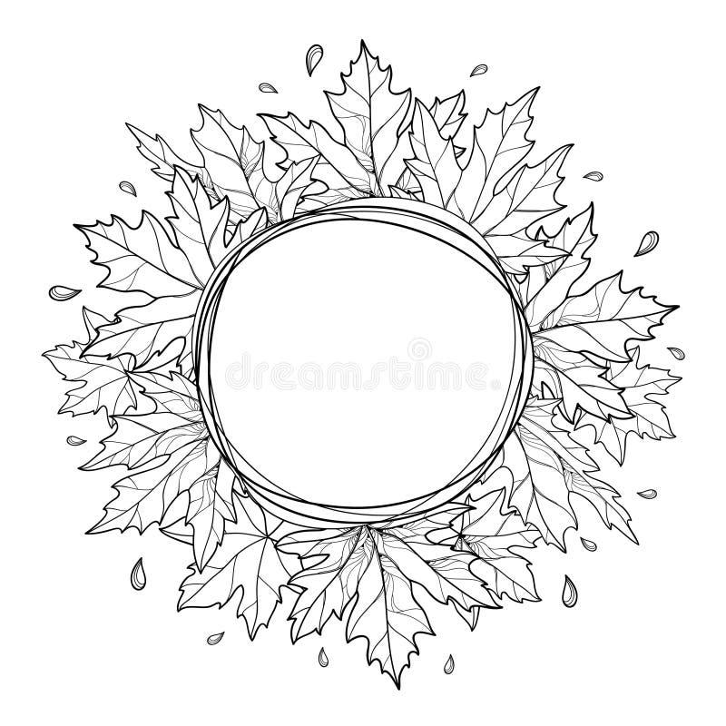 Wektorowa round rama wiązka z konturem Acer lub Klonowy ozdobny liść w czerni odizolowywającym na białym tle royalty ilustracja