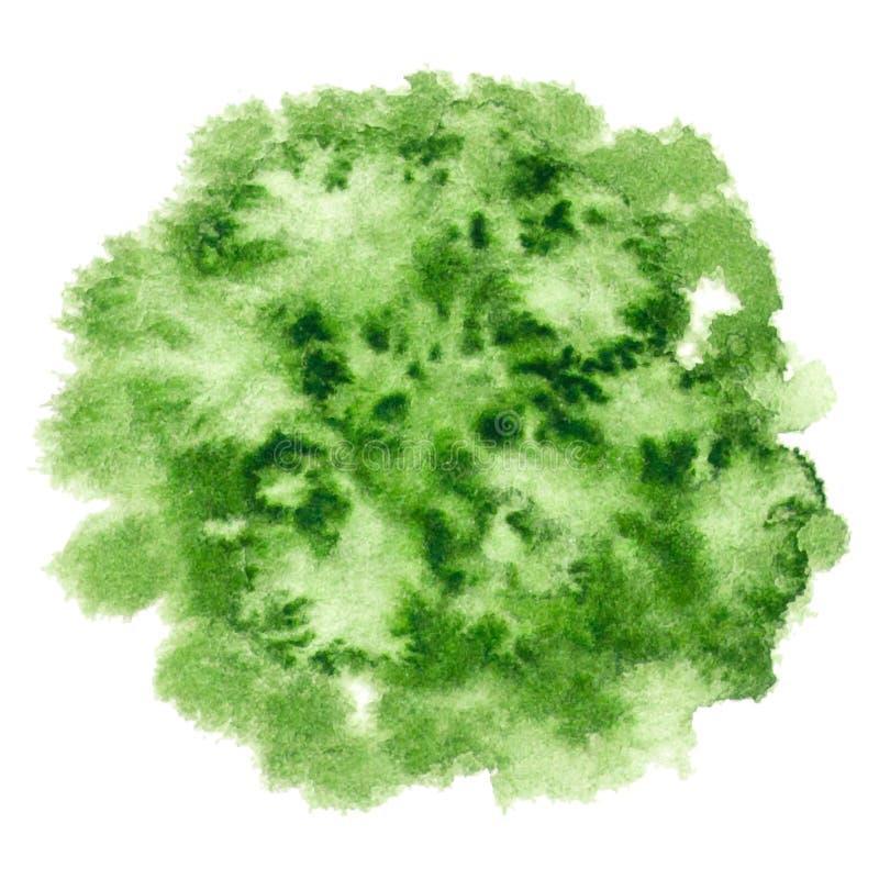 Wektorowa round zieleni farby tekstura odizolowywająca ilustracji