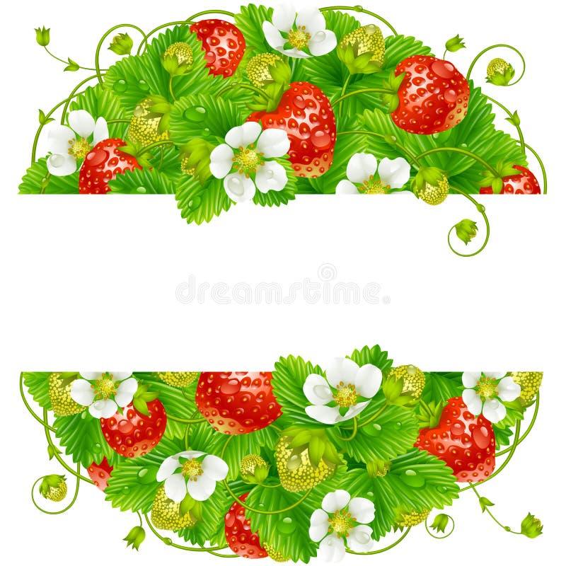 Wektorowa truskawkowa round rama Okręgu skład dojrzałe czerwone jagody ilustracji