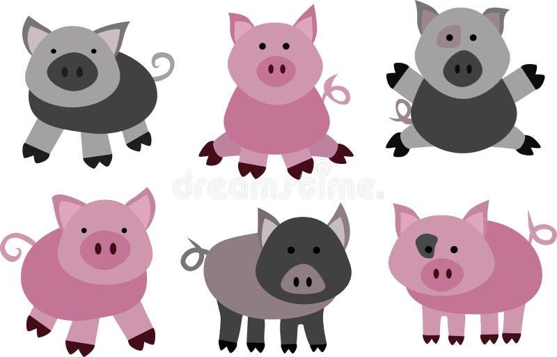 Wektorowe świnie i knury ilustracja wektor