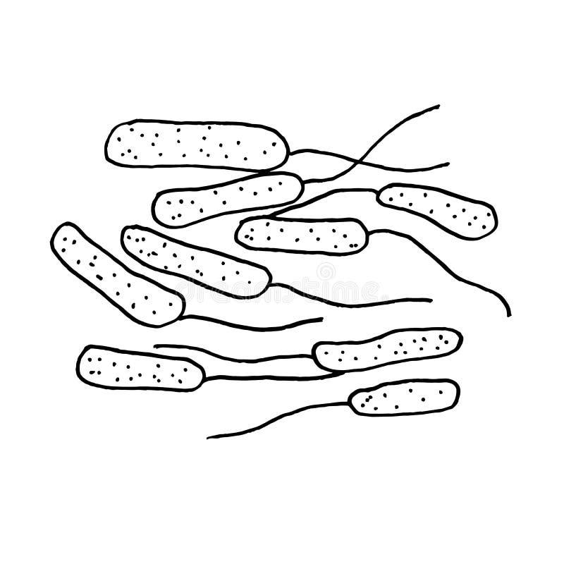 Wektorowe czarne nakreślenie bakterie odizolowywać na białym backgtound Drobnoustrój w medycznej terapii Zarazek choroby element  ilustracja wektor
