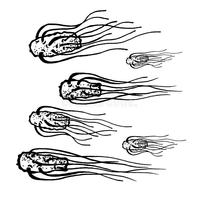 Wektorowe czarne nakreślenie bakterie odizolowywać na białym backgtound Drobnoustrój w medycznej terapii Zarazek choroby element  royalty ilustracja