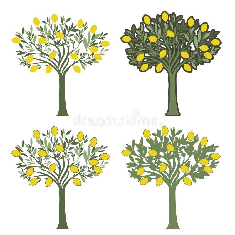 Wektorowe ilustracje cztery cytryny drzewa z różnymi graficznymi stylami na białym tle ilustracji