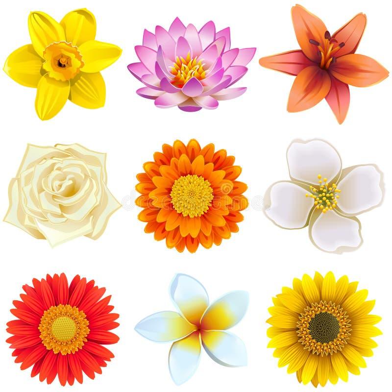 Wektorowe kwiat ikony Ustawiają 2 royalty ilustracja