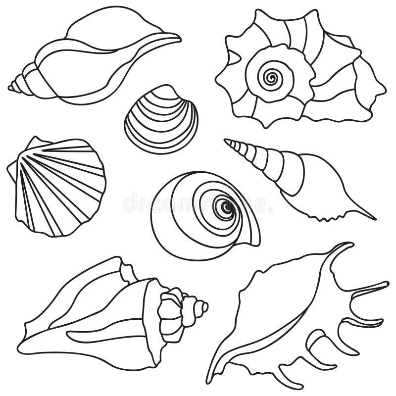 Wektorowe morze skorupy Wakacje letni projekta elementy ilustracja wektor
