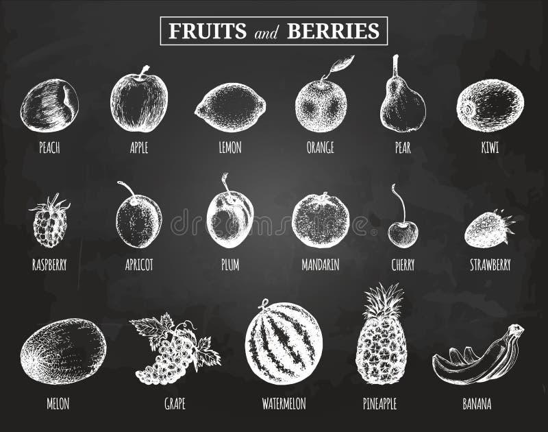 Wektorowe owoc i jagod ilustracje ustawiać Organicznie, eco, życiorys jedzenie Ręka rysująca kreśli na chalkboard śliwce, cytryni ilustracji