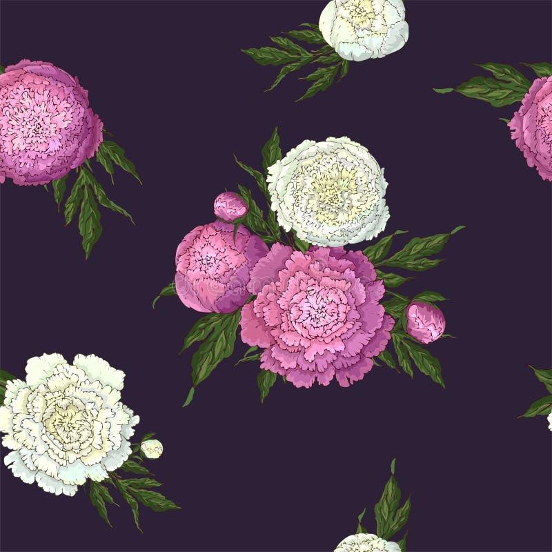 Wektorowe peonie Bezszwowy wzór bez i biali kwiaty Bukiety kwiaty na ciemnym purpurowym tle Szablon dla ilustracji