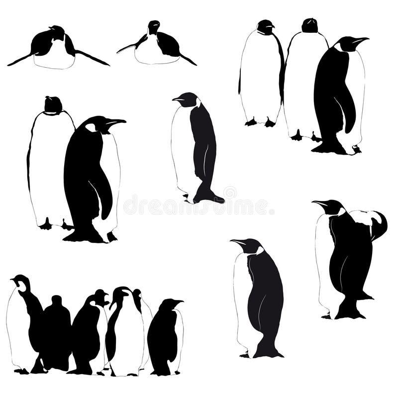 Wektorowe pingwin sylwetki na bielu ilustracja wektor