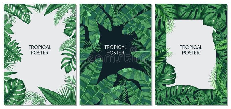Wektorowe projekt karty, sztandary z egzotycznymi liśćmi i, tropikalny printable set ilustracji