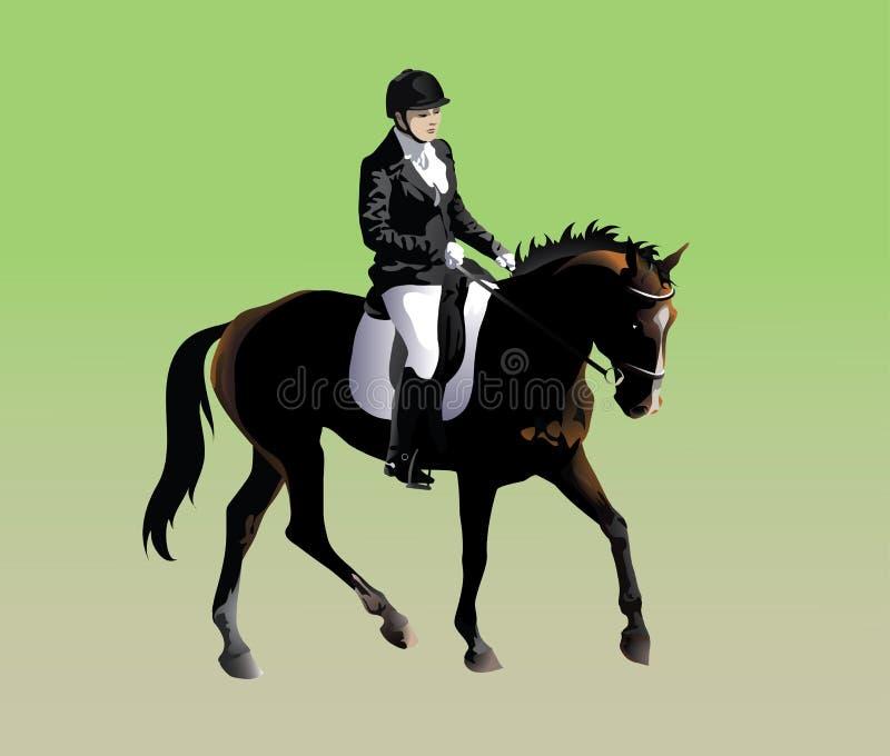 Jeździec atleta uczestniczy w dressage royalty ilustracja
