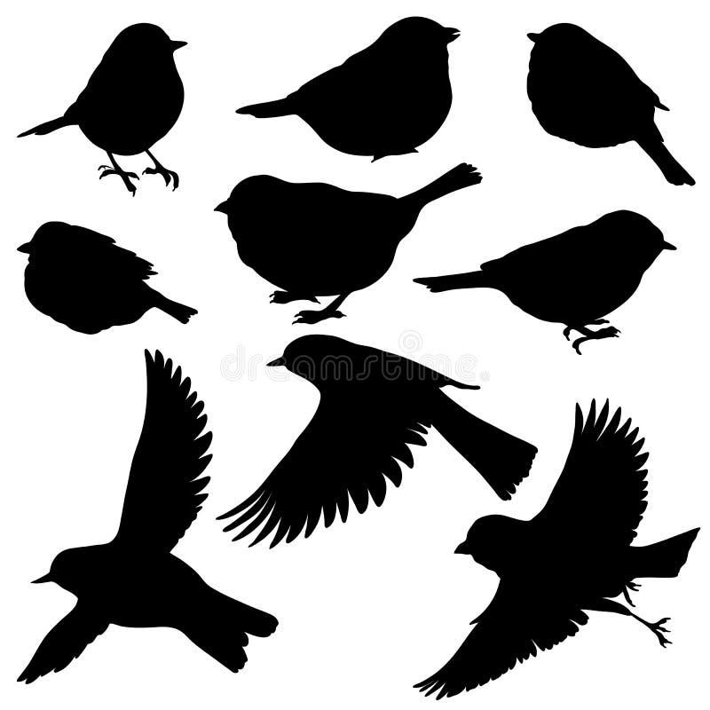 Wektorowe sylwetki ptaki ilustracji
