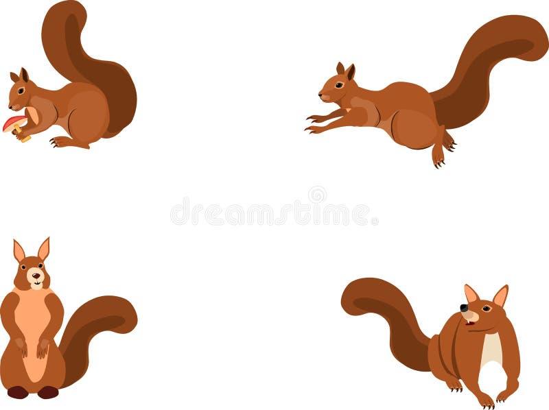 Wektorowe wiewiórki ustawiają, odizolowywali na biel grupie, wektorowa ilustracja ilustracja wektor